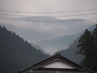 1109satoyamazarug18.jpg