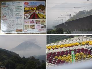 1109satoyamazarug1.jpg