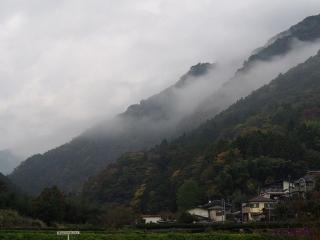1109satoyamazarug21.jpg