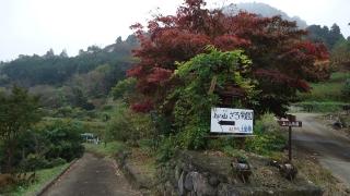 1109satoyamazarug2.jpg