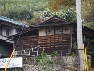 1109satoyamazarug7.jpg