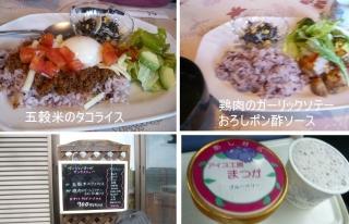 1109satoyamazarug9.jpg