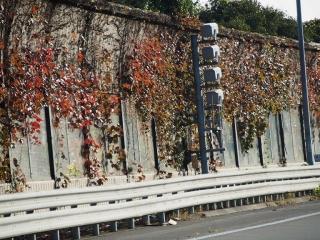 1123miura1.jpg
