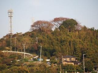 1123miura2.jpg