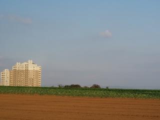 1123miura3.jpg