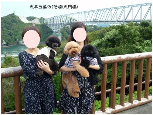 2011091721.jpg