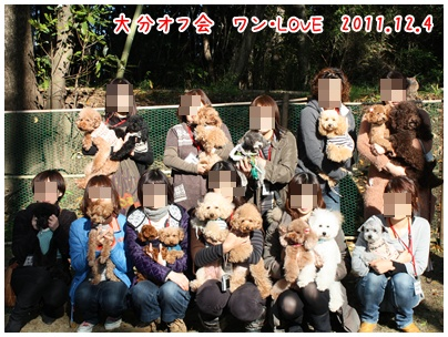 2011120415.jpg