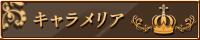 ca_banner.jpg