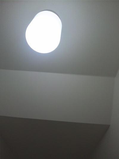 12111204.jpg
