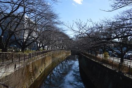 2014-01-19_110.jpg