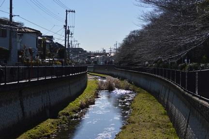 2014-01-19_35.jpg