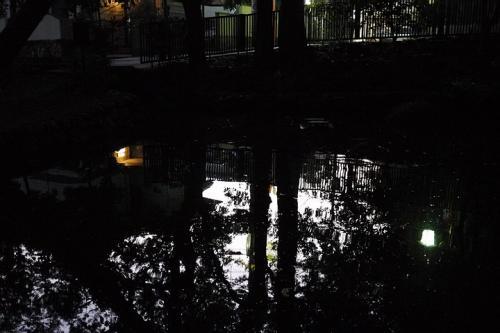 20111113_16.jpg
