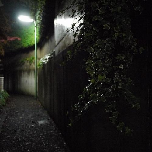 20111203_12.jpg