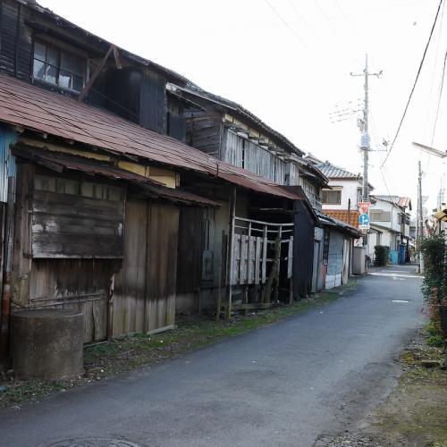 20120102_b5.jpg