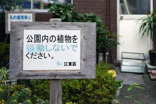 20141124_10.jpg