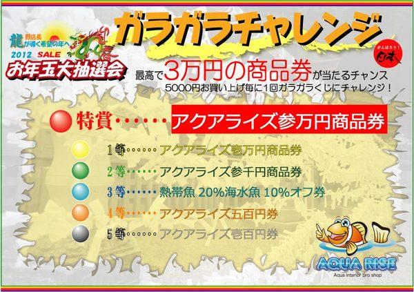 CAC-thumbnail2.jpg