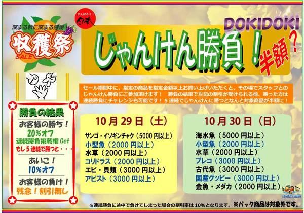 dokidoki2011E58F8EE7A9ABE7A5AD-thumbnail2.jpg