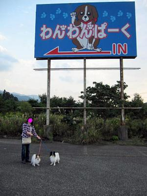 20111010わんわんパーク