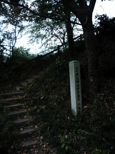 NCM_0664.jpg