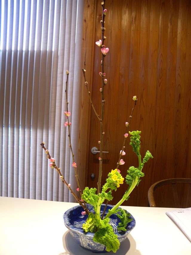 桃と菜の花001