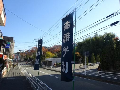 sasago2.jpg