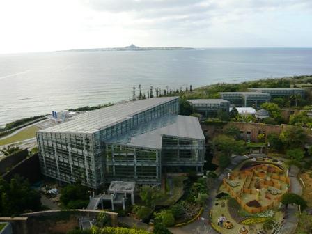 熱帯ドリームセンター:温室全景