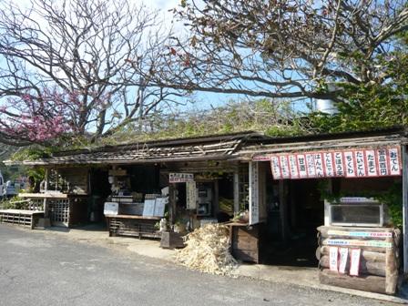 今帰仁城公園:茶店