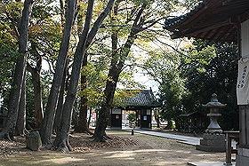 吉田八幡神社12