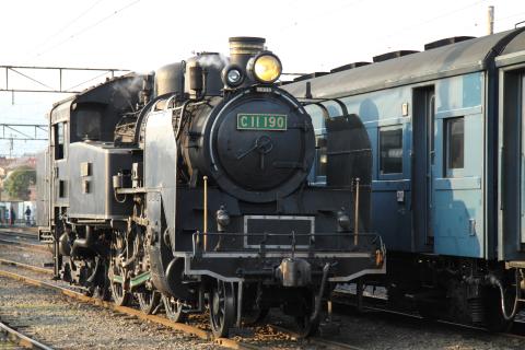 C11-190.jpg