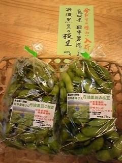 111013田中農場丹波黒枝豆