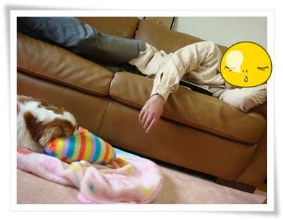向き合って寝る親子