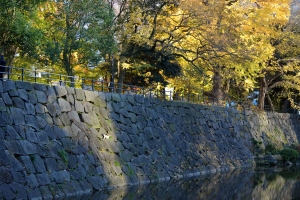 Edo Stone Wall and (very small) Cat