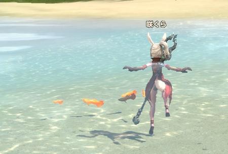 こういうお魚を集めるイベントとか夏なんだし作ったら?(運営様