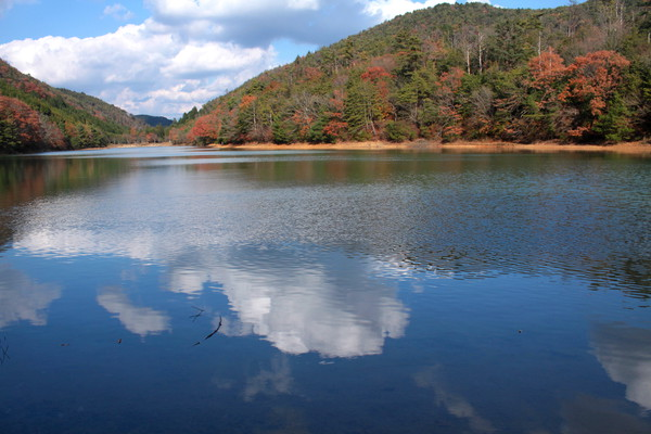 秋 沢池 2