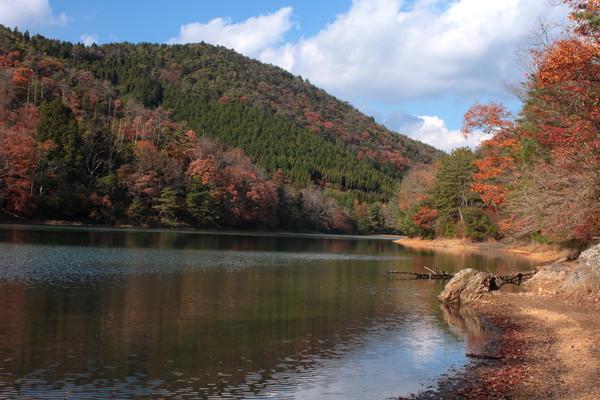 秋 沢池 3