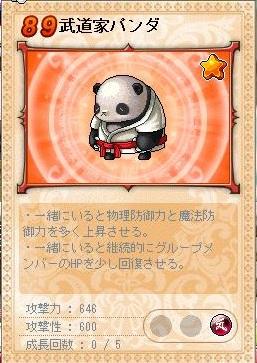 武道家パンダ