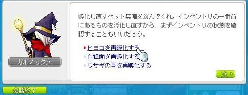 Maple120105_155649.jpg