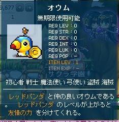 Maple120105_155723.jpg
