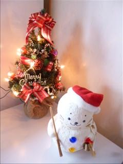 2014-12-01 クリスマスツリー (家)_0