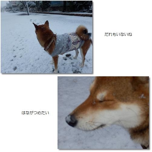 雪の日10