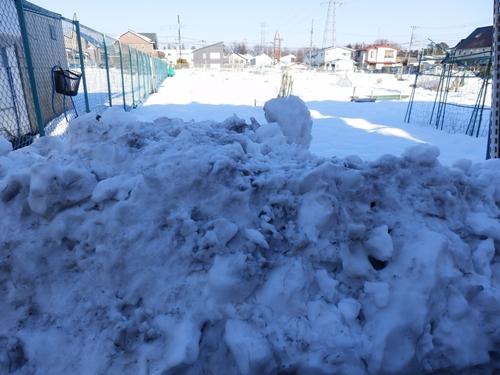 2雪の畑4