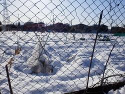 2雪の畑5