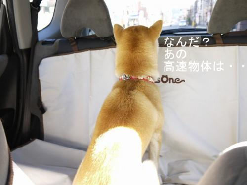 車内での儀式5