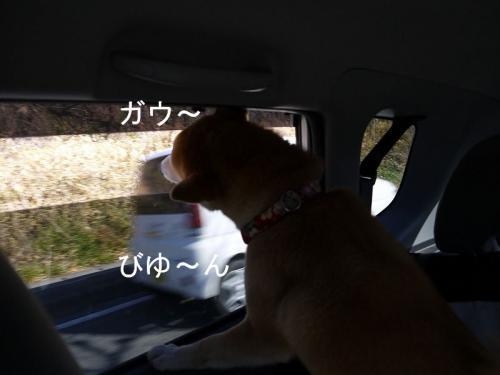 車内での儀式3