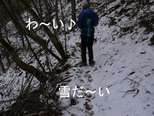富士見山5