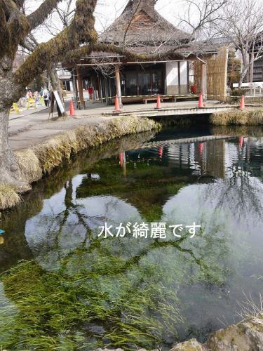 忍野八海3