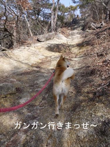 里山散歩2