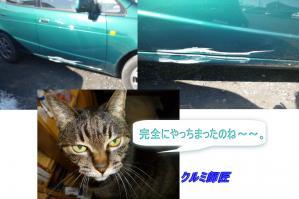 image_20120128173924.jpg