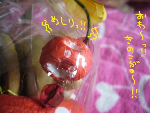 11,うさフェスめい(2)