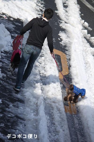 雪の中の散歩4